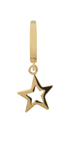 Endless Jewelry Star Gelbgold