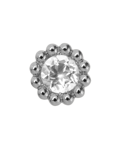 Endless Jewelry Crystal Flower Silber